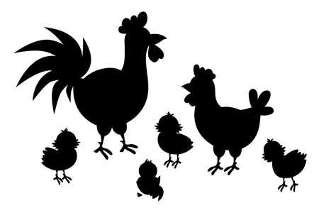 Adult hen and rooster with chickens on a white background. A cute hen family with their chickens. Silhouette Ilustrace
