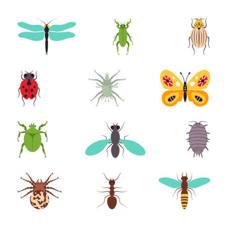 Insects icons flat set isolated vector illustration Ilustrace