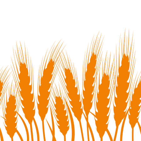 Seamless background with ears of wheat. Vector illustration. Vector Illustratie