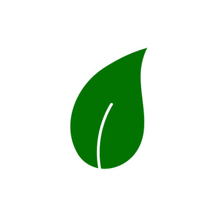 Eco leaves, logo, icon, template and design elements on white isolated background in green color. Vector illustration. 向量圖像