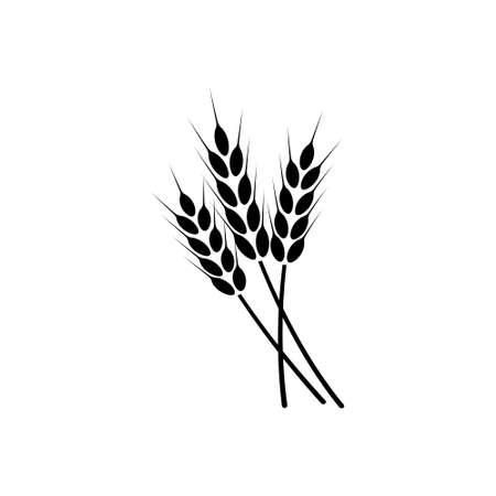 Ears of wheat. Vector illustration on white isolated background.