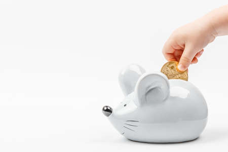 Kid Toddler's hand puts a bitcoin coin in a gray mouse or rat piggy bank on a white background with place for text. Concept for topics about currencies and finance, horoscope and new year 2020.