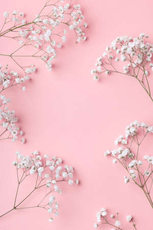 Small white gypsophila flowers lying in a frame on a pink background with place for text. Gentle romantic concept for the inscription and title of a post or article.