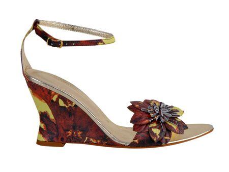 fashion shoes Stock Photo - 17014543