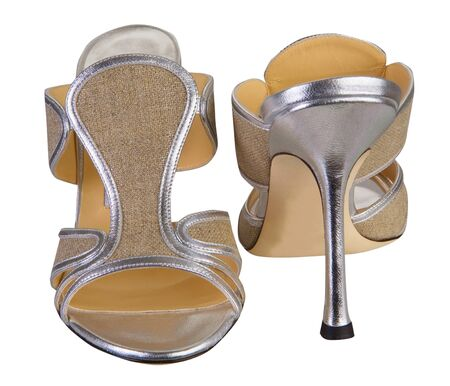 fashion shoes Stock Photo - 17503868