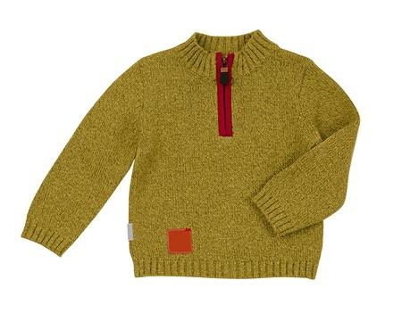 yellow jacket Stock Photo - 18197845