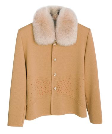 yellow jacket: yellow jacket isolated on white background Stock Photo
