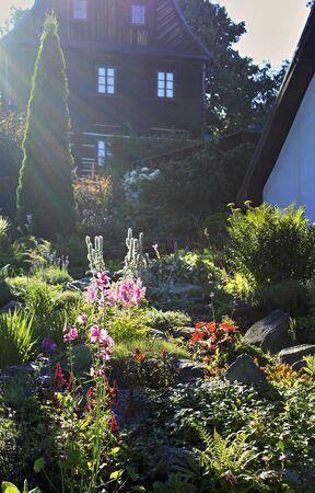 Tuin vol bloemen overspoeld door zonlicht
