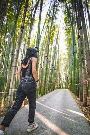 Female woman walks down the path in dendrological park in Georgia with bamboo trees around protected by no crossing striped red white tape.