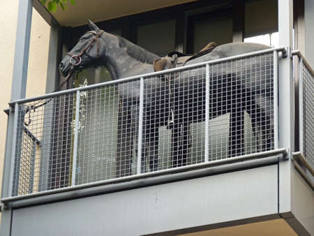 Horse on the balcony of an apartment building, Cologne