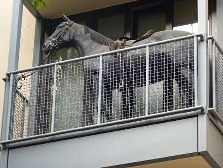 Pferd auf dem Balkon eines Mehrfamilienhauses, Köln Lizenzfreie Bilder