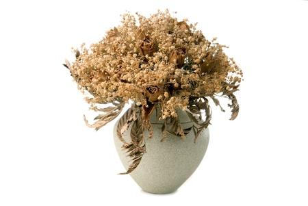 brunch of dry roses in ceramic pot on white background Stock Photo
