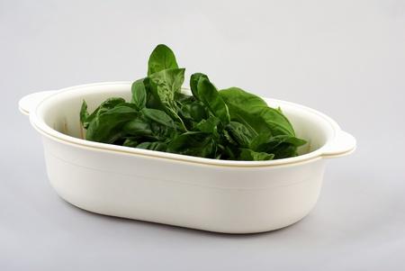 fresh basil in white kitchen bowl