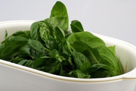 fresh basil in white bowl