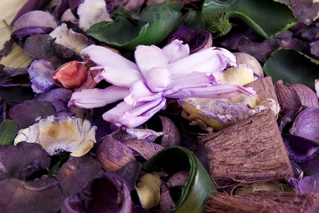 close up of colorfull flowers pot pourri Stock Photo