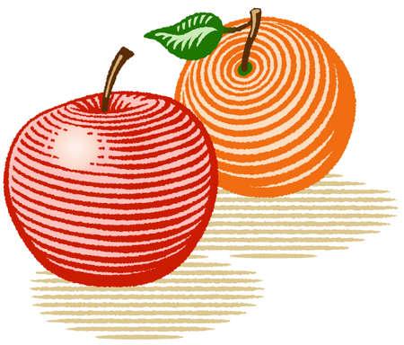Vectorillustratie in houtsnede stijl van een appel en een oranje.