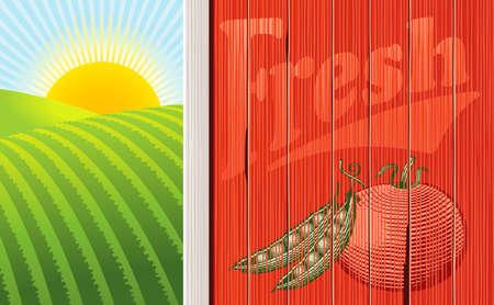 Ilustración vectorial de la cara de un granero con una ilustración de hortalizas se perdió, y un amanecer en algunos ámbitos. Varios niveles para facilitar la edición.