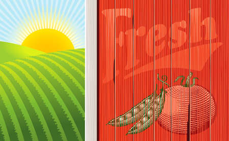 Vector illustration of the side of a barn with a faded vegetable illustration, and a sunrise over some fields. Multi-layered for easy editing. Ilustração