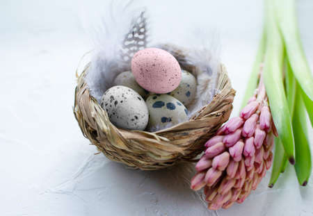 Easter eggs in the small nest with feathers and a hyacinth flower on a light background. Copy space. The Easter concept. Happy Easter 스톡 콘텐츠