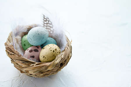 Colorful Easter eggs in the small nest with feathers on a light background. Copy space. The Easter concept. Happy Easter 스톡 콘텐츠