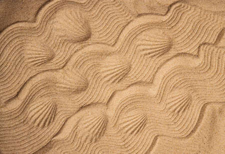 Abstract background of sand. Prints of shells and waves of sand. Copy space. Macro. 스톡 콘텐츠