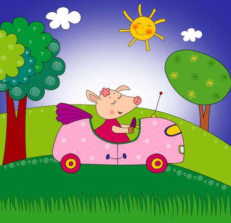 Piggy on the car photo