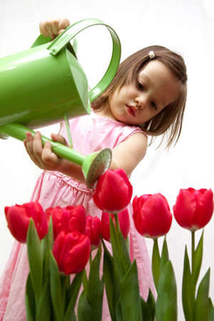 little toddler girl in a pink dress droping the red tulips Stock Photo - 6594886