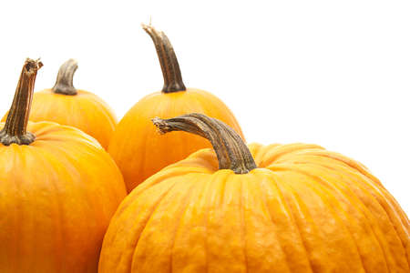 orange pumpkins  for halloween decoration Stock Photo