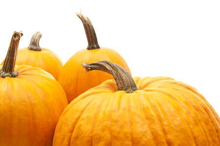 orange pumpkins  for halloween decoration Stock Photo