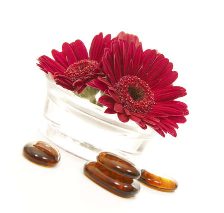 glass stones and gerber flower in a glass pot photo