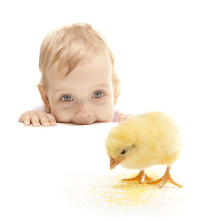 little cute girl looking the easter chicken