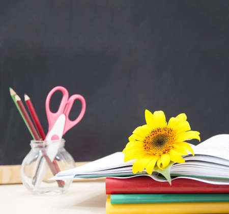 accesories to aback to school - concept with sun flower photo