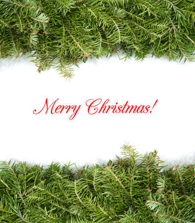 christmas border with green pine photo