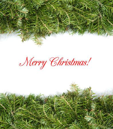 christmas border with green pine