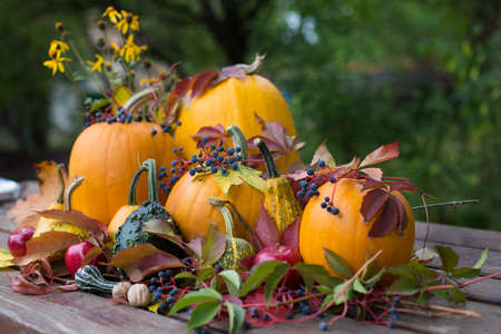 Colorful autumn decoration, pumpkins and fruits