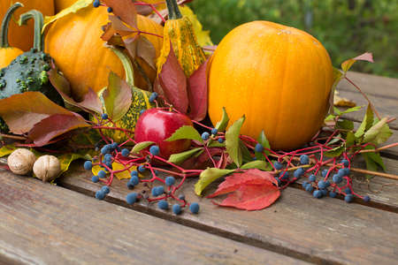colored autumn decoration with pumpkins