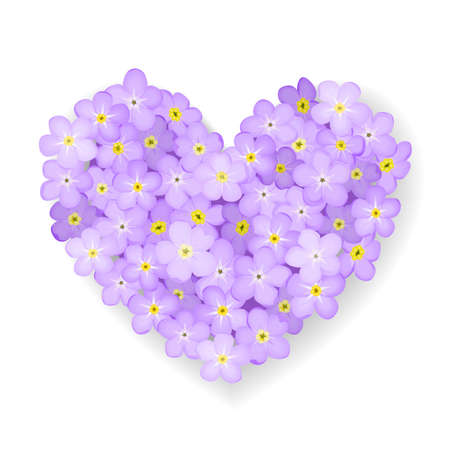 Forget-me-not flower heart isolated on white background  Vector