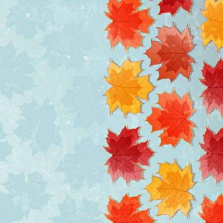 Autumn background with maple leaves illustration  Vector