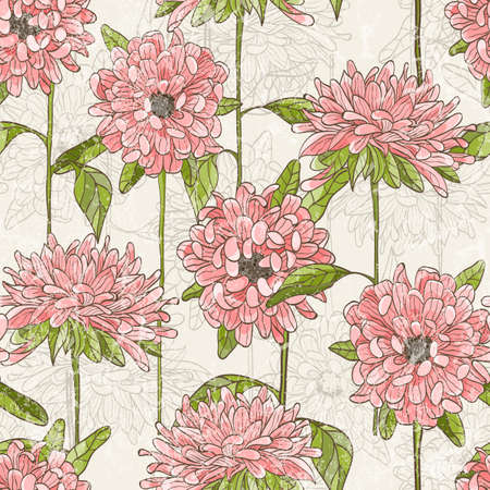 botanical drawing: Seamless pattern with hand drawn chrysanthemum  Illustration