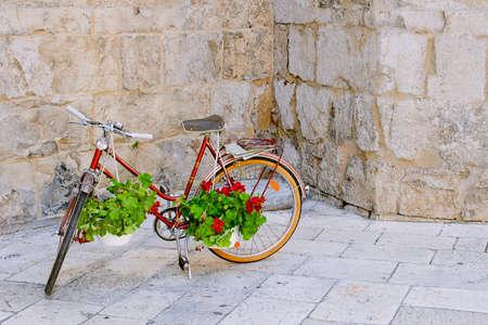 decorated bike: Bicicletta rossa con fiori di geranio. Archivio Fotografico