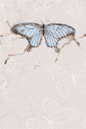 Vector background with watercolor butterfly.  Vector
