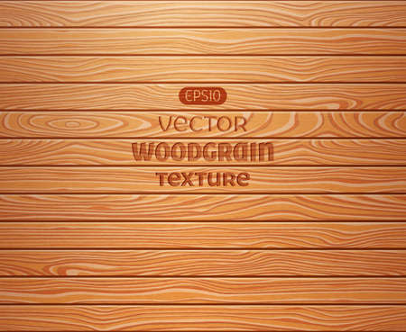 Wood texture background. EPS 10 vector illustration. Vector