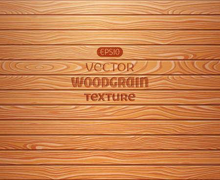 porte bois: Wood texture de fond. EPS 10 vector illustration.