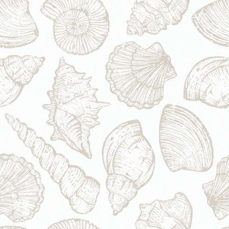 Seamless pattern with hand drawn sea shells. Vector