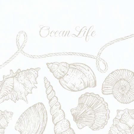 Background with hand-drawn sea shells and rope. EPS 10 vector illustration. All shells are available under the clipping mask. Vettoriali