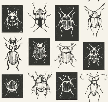 bugs: Seamless geometric print with bugs.