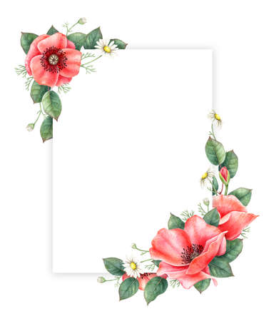 Poppy and chamomille floral greeting card template. Hand drawn watercolor illustration.