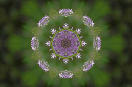 labyrinthine: green and lilac decorative pattern Stock Photo