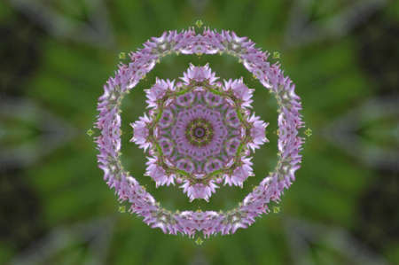 green and lilac decorative pattern Stock Photo
