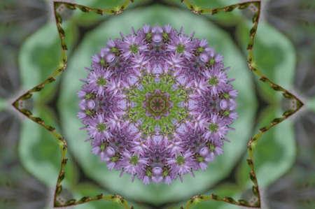 labyrinthine: green and lilac decorative pattern Stock Photo